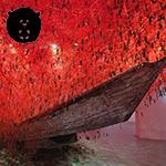 A trajetória e a história por traz das obras da artista visual Chiharu Shiota!